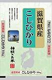 【精米】滋賀県産 白米 こしひかり 10kg 平成29年産