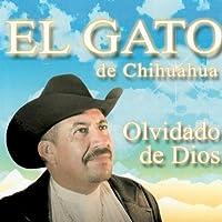 Olvidado de Dios by El Gato de Chihuaahua (2008-11-25)