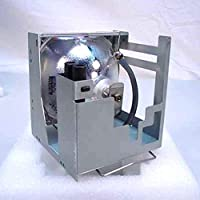 SpArc Bronze Toshiba TLP-310 Projector Replacement Lamp with Housing [並行輸入品]