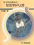 セミヤドリガ (日本の昆虫)
