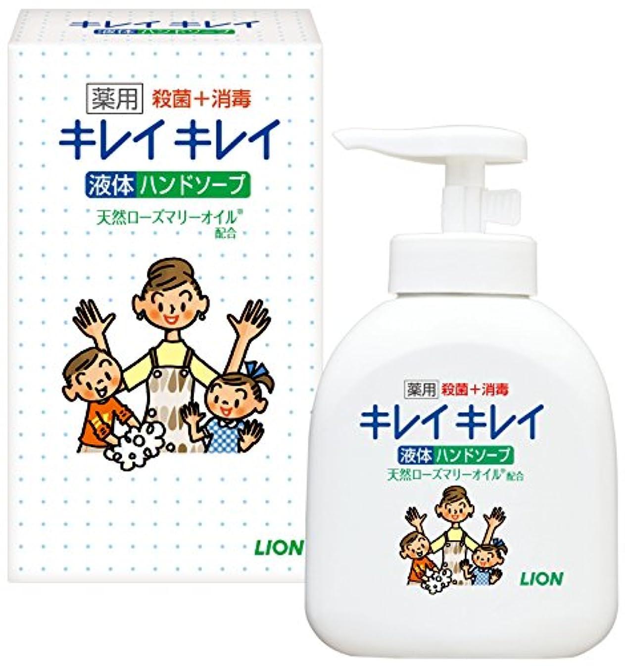 なめらかな子孫一般的にキレイキレイ薬用液体ハンドソープ250ml ノベルティギフト用化粧箱入