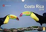 Costa Rica 2018 Exotische Vogelwelt (Wandkalender 2018 DIN A4 quer): Die schillernden Stars der Vogelwelt Costa Ricas in freier Wildbahn eingefangen. (Monatskalender, 14 Seiten )