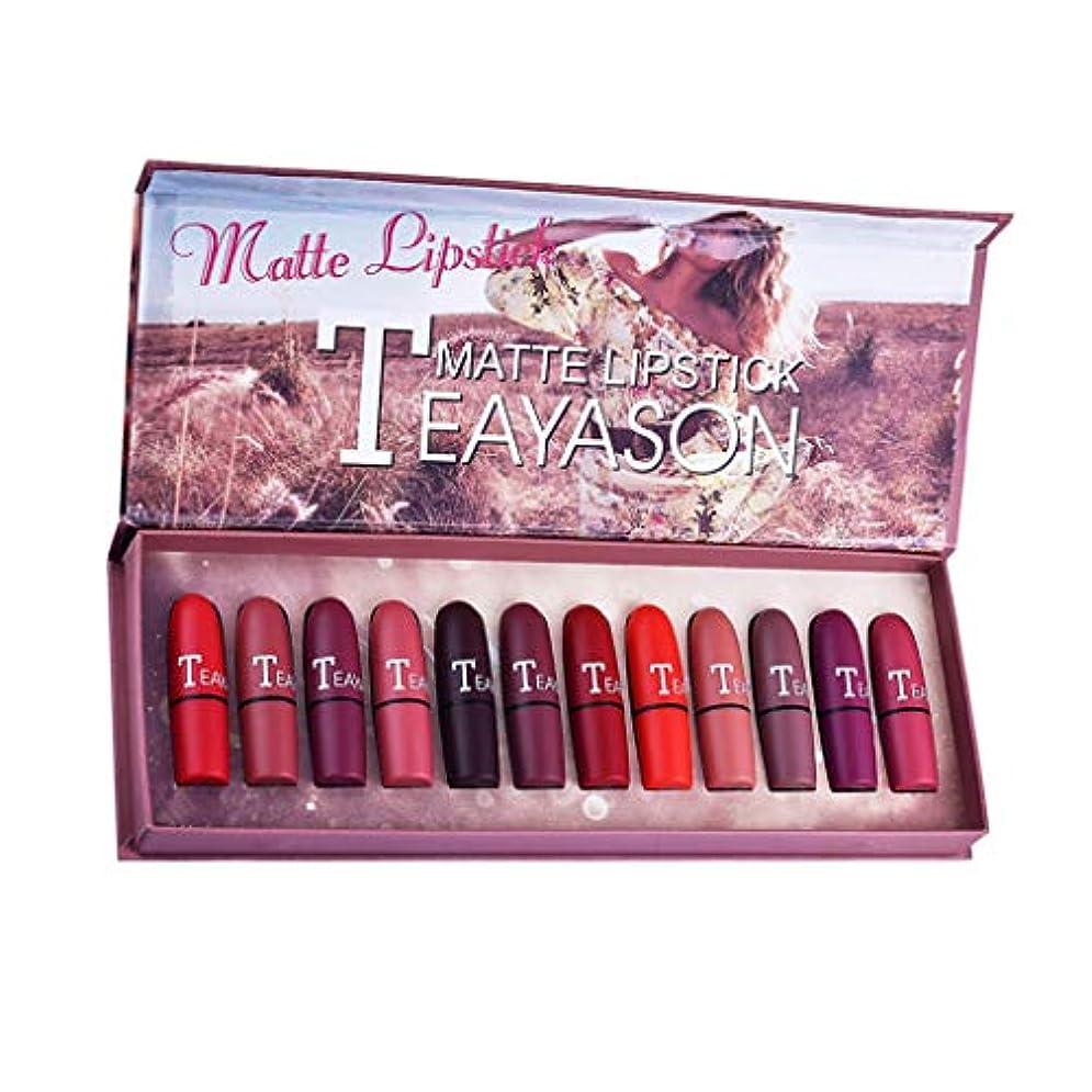 意味のあるハムレーザSM SunniMix ミニマット 口紅セット 12色 長持ち色 防水 化粧品 メイク リップ スティック マルチカラー ボックス付き