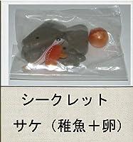 ユージン 原色図鑑シリーズ6 原色淡水魚図鑑2 シークレット:サケ(稚魚+卵) ガチャポン チョコエッグフィギュア