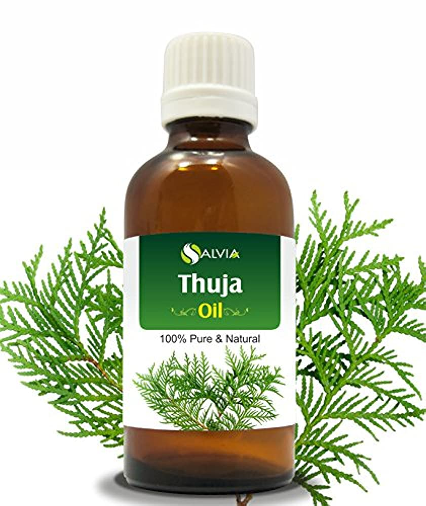 うがい魅了する作動するTHUJA OIL (THUJA ORIENTALI) 100% NATURAL PURE ESSENTIAL OIL 50ML