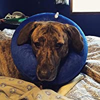 FidgetGear Comfy Plush Inflatable Collar Pet Cat Dog E-Collar Elizabethan Collar Cone M