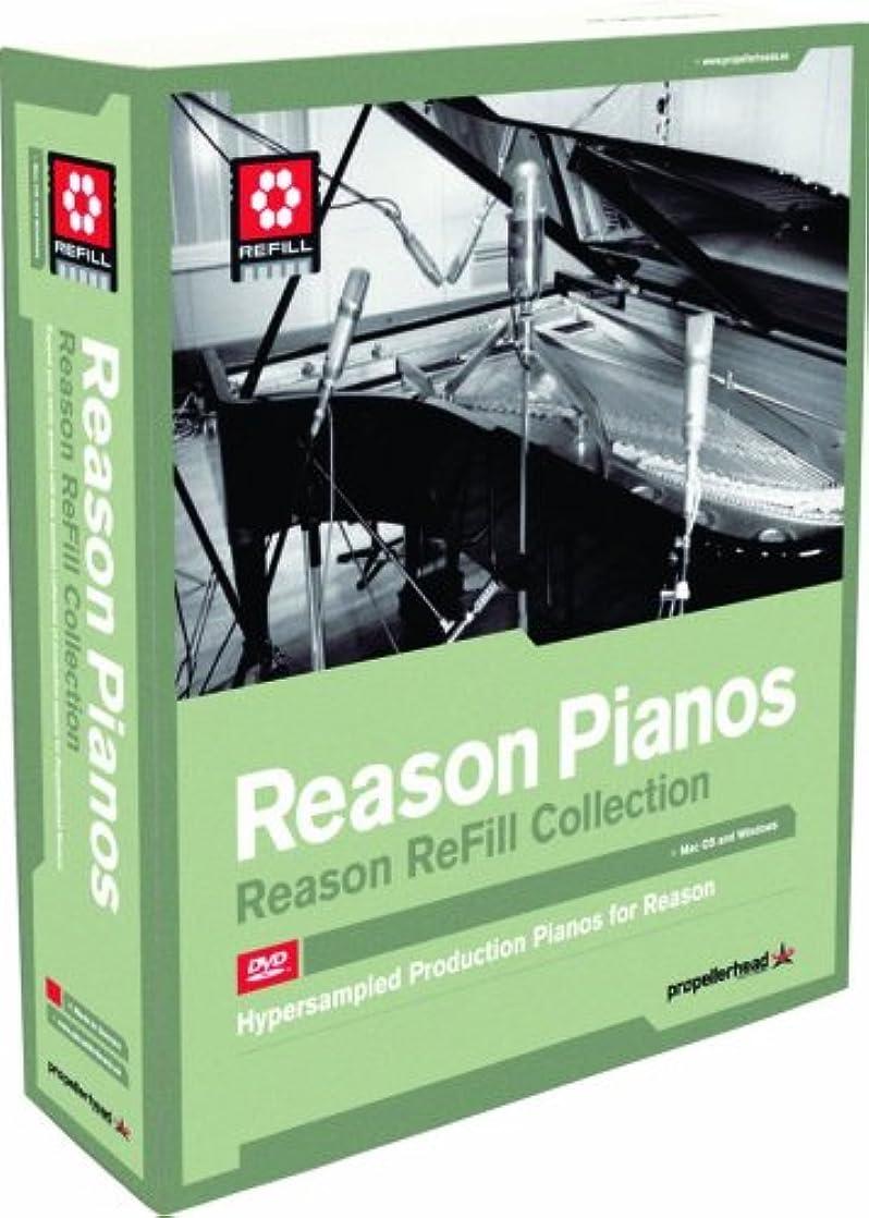 処分した算術どれReason Pianos
