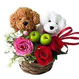 花 誕生日プレゼント プレゼント 女性 トイプードルのペア フラワーアレンジメント