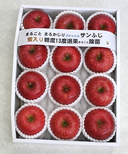 りんご 青森県産まるかじりフレッシュサンふじ 3kg(9〜12個)