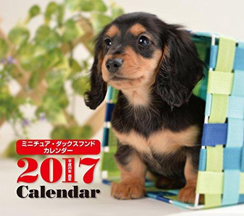 2017年ミニカレンダー ミニチュア・ダックスフンド ([カレンダー])