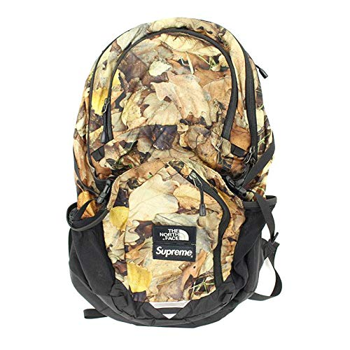 16AW Pocono Backpack カモフラ柄