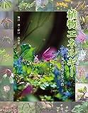植物エネルギー 北海道医療大学の森