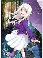 劇場版 「Fate/stay night [Heaven's Feel] II .lost butterfly」 BD DVD ゲーマーズ特典 B2タペストリー イリヤスフィール