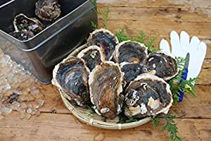 夏牡蠣のカンカン焼き 三重県産 8個 軍手、ナイフ付[牡蠣]