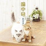 猫中毒(通常盤)