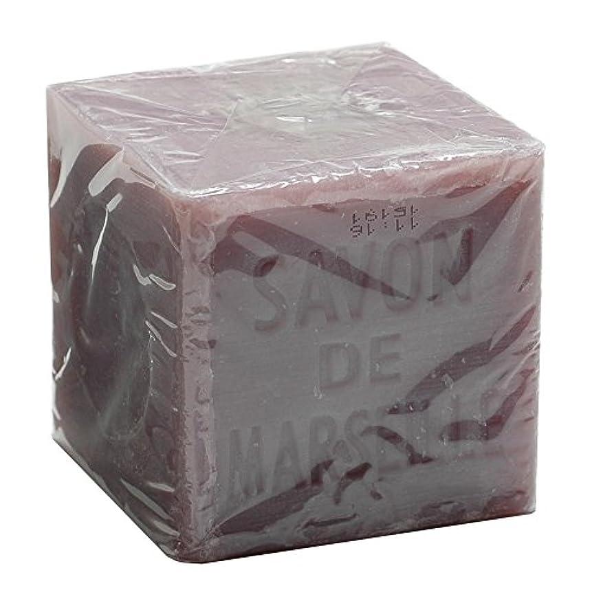 アンデス山脈内なる加速度Plantes&Parfums [プランツ&パルファム] マルセイユソープ400g バイオレット