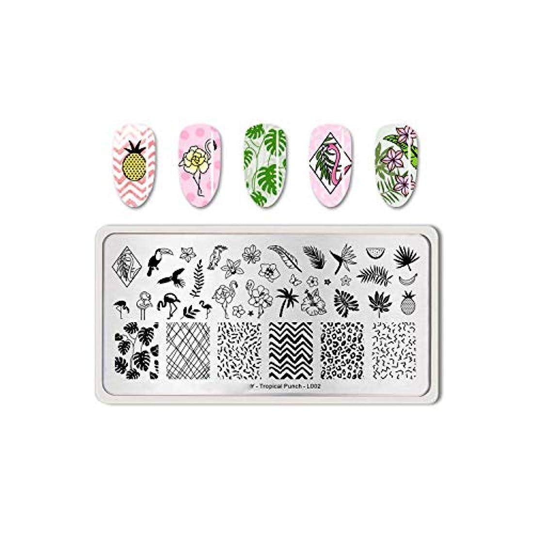 ルーム雪の噛むフルーツネイルアートスタンピングテンプレートトロピカルパンチパターン長方形イメージプレートスタンピング,Tropical Punch L002