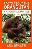 Facts About the Orangutan (A Picture Book for Kids, Vol 256)