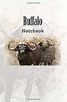 Buffalo: Notebook