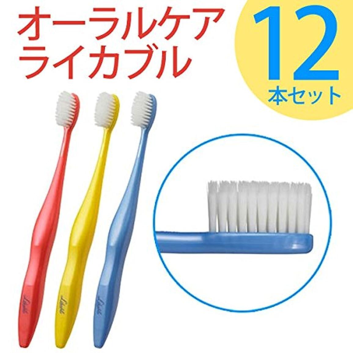 童謡また明日ね容器ライカブル ライカブル メンテナンス用 歯ブラシ 12本セット