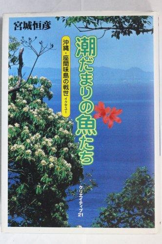 潮だまりの魚たち―沖縄・座間味島の戦世