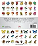 Natural History: The Ultimate Visual Guide to Everything on Earth (Smithsonian) 画像