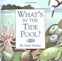 What's in the Tide Pool?