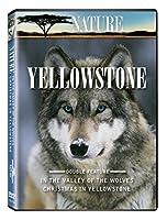Nature: Yellowstone [DVD] [Import]