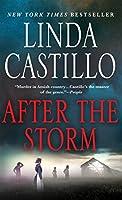 After the Storm (Kate Burkholder Novels)