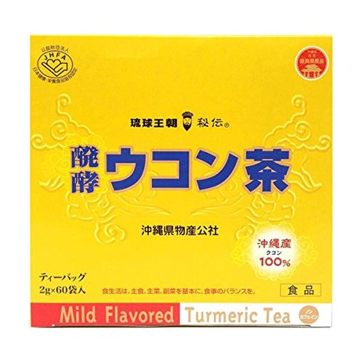 ホイストにもかかわらず集団的【お徳用 2 セット】 発酵ウコン茶 ティーバッグ 2g×60袋×2セット
