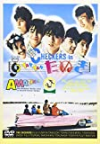 CHECKERS in TAN TAN たぬき[DVD]