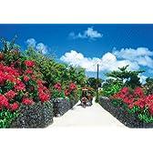 450+70ピース ジグソーパズル 竹富島―沖縄 スモールピース(26x38cm+10x14.7cm)