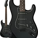 Bacchus エレキギター Universe Series IKEBE ORIGINAL HST-ALL BLACK