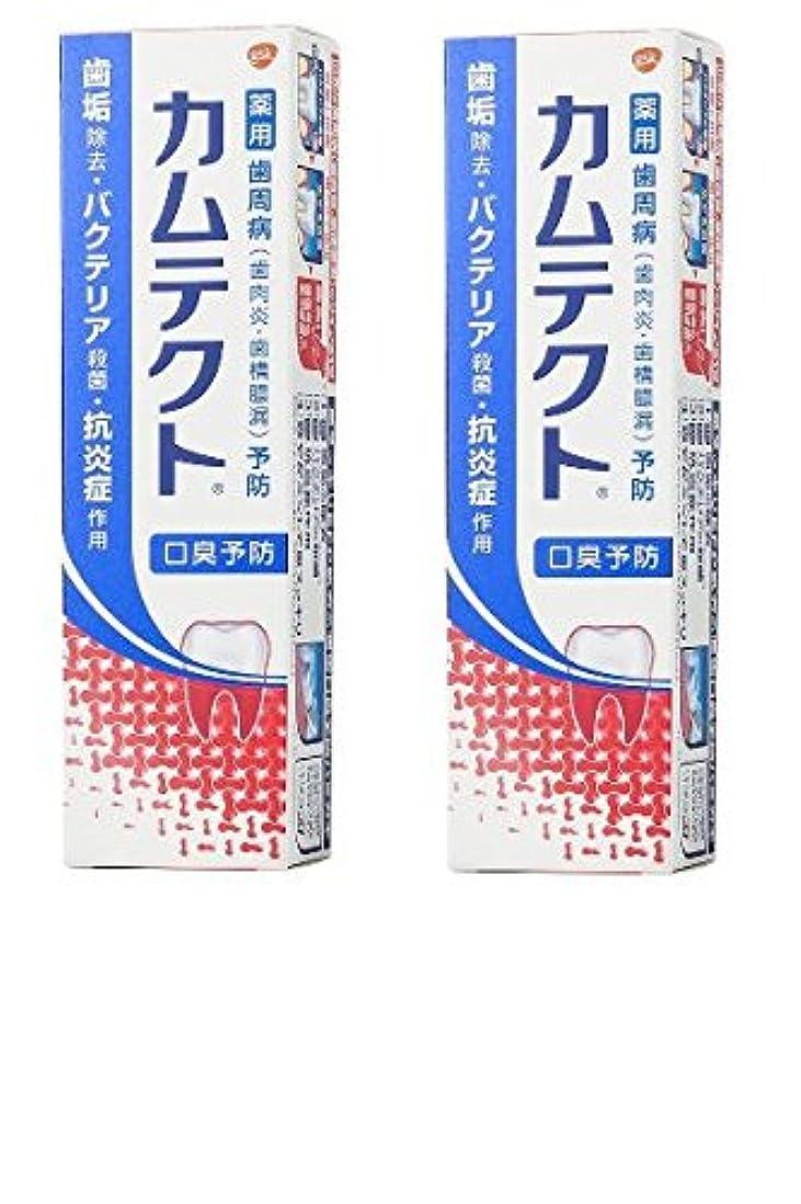 塊天井お茶【まとめ買い】カムテクト 口臭予防 歯周病(歯肉炎?歯槽膿漏) 予防 歯みがき粉 105g × 2個