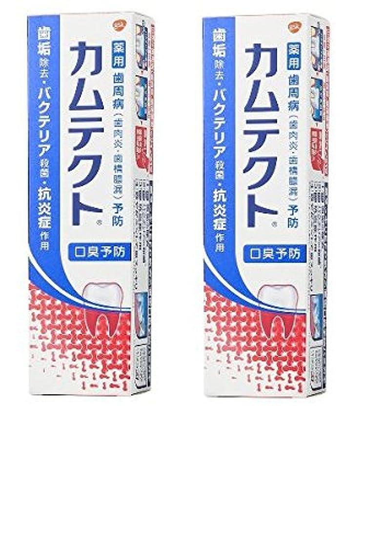 船員再発する顕現【まとめ買い】カムテクト 口臭予防 歯周病(歯肉炎?歯槽膿漏) 予防 歯みがき粉 105g × 2個