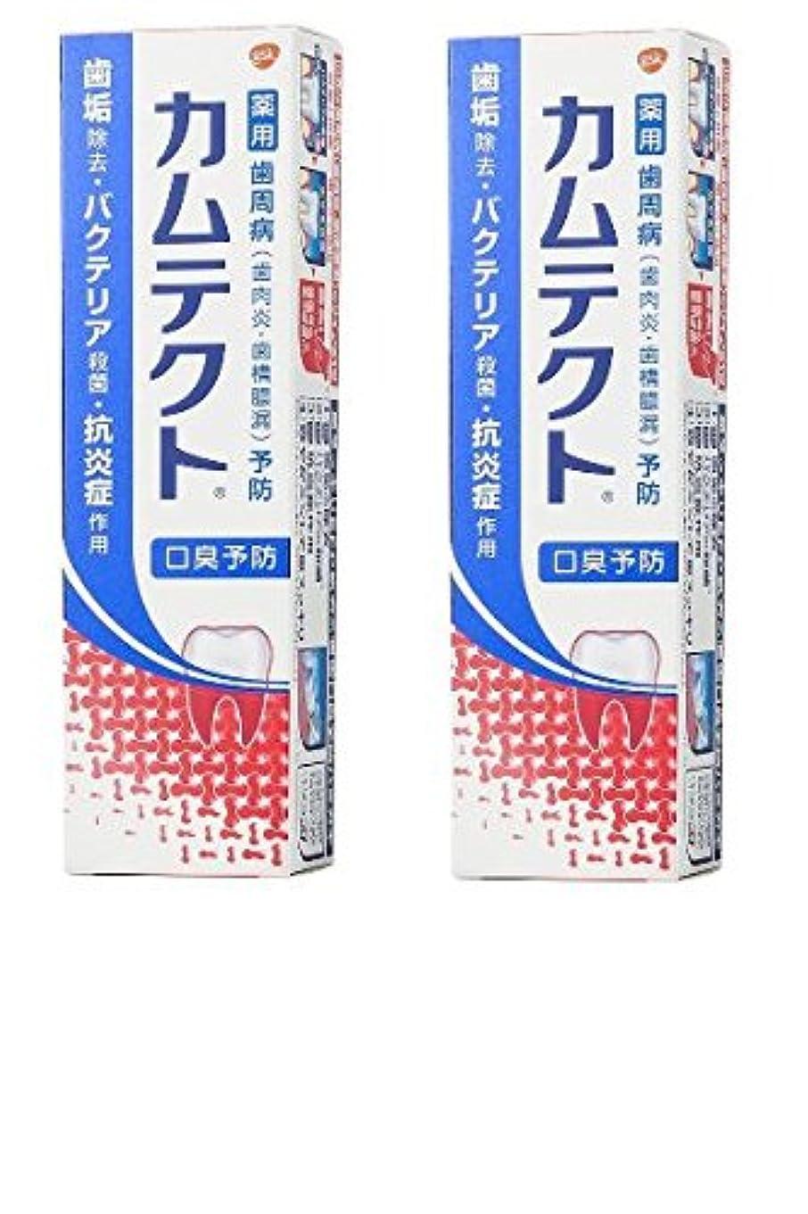 文明化するデザイナー偏心【まとめ買い】カムテクト 口臭予防 歯周病(歯肉炎?歯槽膿漏) 予防 歯みがき粉 105g × 2個