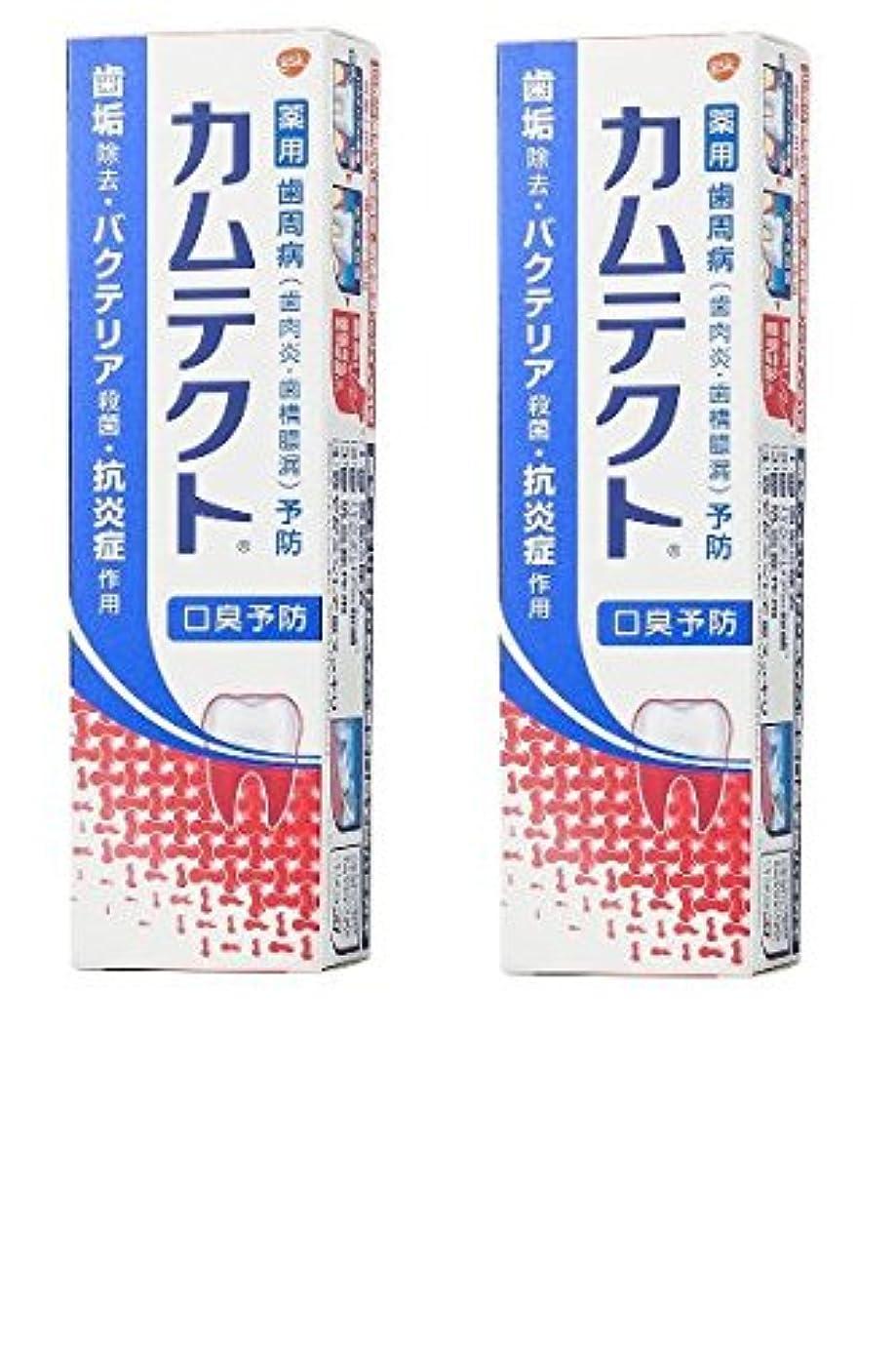 地味な逆にガラス【まとめ買い】カムテクト 口臭予防 歯周病(歯肉炎?歯槽膿漏) 予防 歯みがき粉 105g × 2個