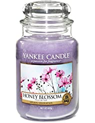 Yankee Candle Large Jar Candle, Honey Blossom by Yankee [並行輸入品]