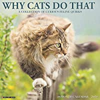 Why Cats Do That 2020 Calendar: A Collection of Curious Feline Quirks