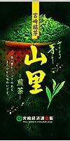 【宮崎茶】 煎茶 山里(10袋セット)