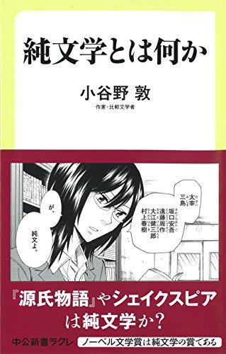 純文学とは何か (中公新書ラクレ 604)