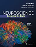 Neuroscience: Exploring the Brain, North American Edition 画像