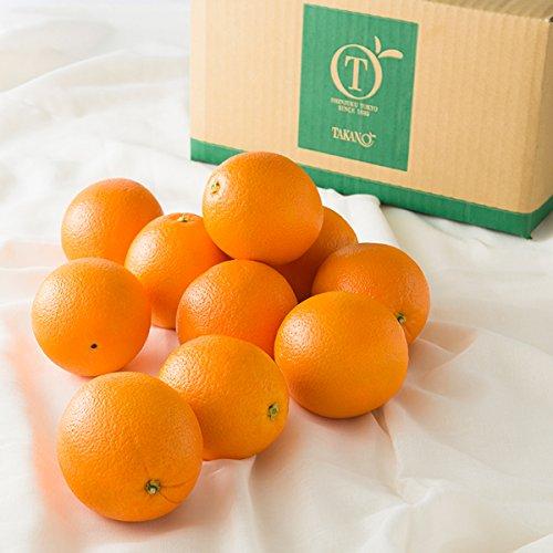 新宿高野 Day Fruit デイフルーツ オレンジ #29100