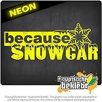 プロパティスノーカー Property Snowcar 20cm x 8cm 15色 - ネオン+クロム! ステッカービニールオートバイ