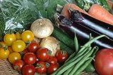 【寿山のたまて箱】元気な九州有機野菜(鹿児島) - 野菜の先生が選ぶ季節の旬野菜 - 8~9品セット