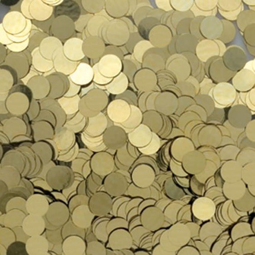 シリアルテニス共産主義者ピカエース ネイル用パウダー 丸メタリック 耐溶剤 1mm #553 LGゴールド 0.5g