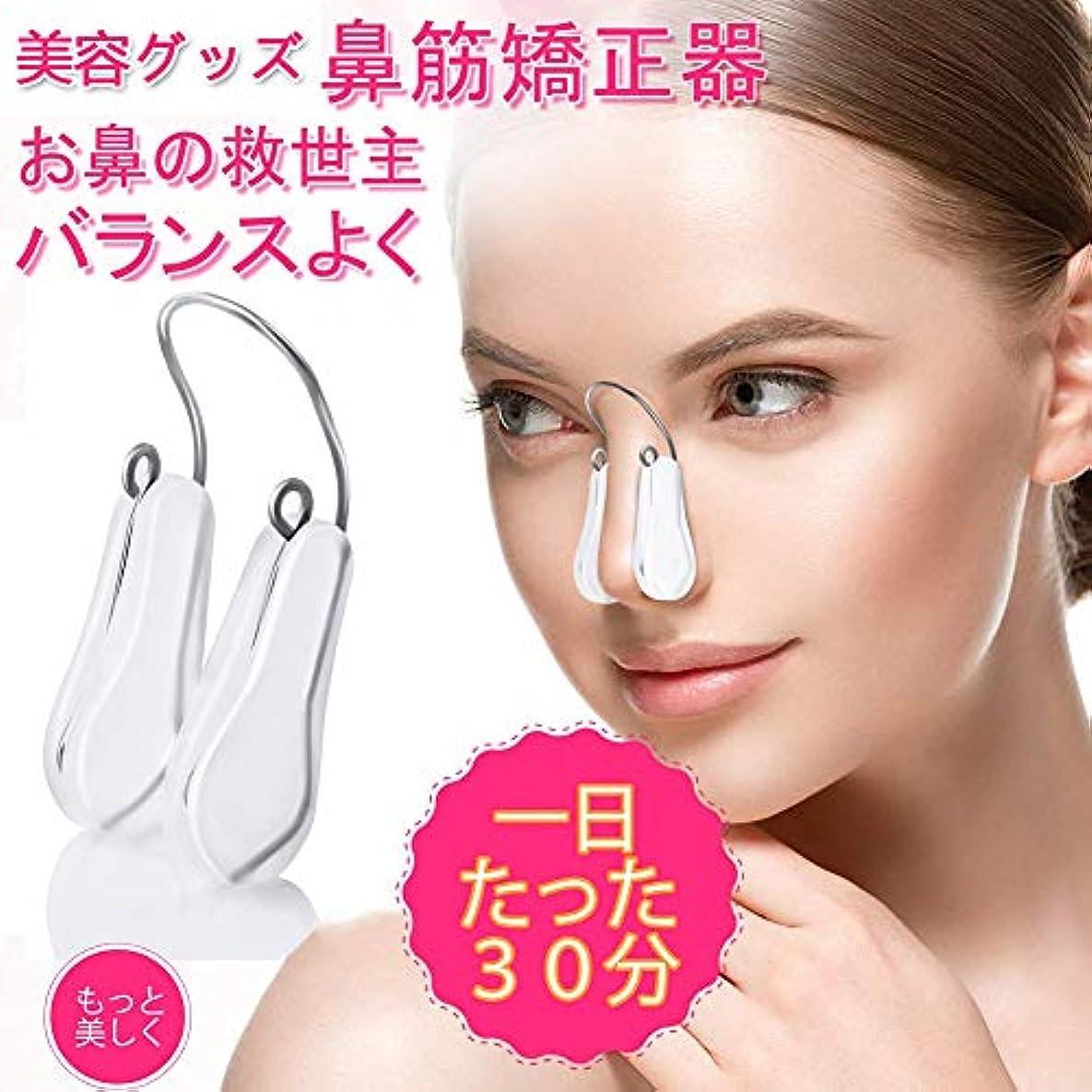 ラジカルましい影響鼻筋矯正 鼻高くする 鼻筋ピン ノーズクリップ 美容グッズ ノーズアップピン 美鼻セレブ 鼻プチ 男女共有