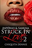 Antonio and Sabrina Struck In Love 2: Volume 2 (Antonio and Sabrina: Struck In Love Book)