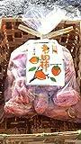 ★【タイムセール】【干し柿】産地直送 長野県 わけありが1,768円!