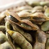 令和元年産 丹波篠山産 黒大豆枝豆(丹波篠山市認定販売所たぶち農場) さやのみ1kg